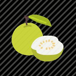 farm, food, fruit, guava, nature, organic icon