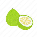 farm, food, fruit, nature, organic, pomelo icon