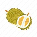 durian, farm, food, fruit, nature, organic icon
