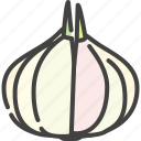 food, garlic, healthy, vegetable, vegetarian icon