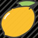 berry, food, fruit, healthy, mango, vegetarian icon