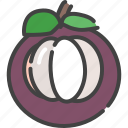 berry, food, fruit, healthy, mangosteen, vegetable icon
