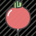 food, healthy, radish, vegetable, vegetarian icon