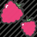 berry, food, fruit, healthy, raspberries, vegetarian icon