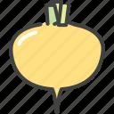 food, healthy, turnip, vegetable, vegetarian icon