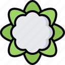 cauliflower, food, shop, supermarket, vegetable, vegetables icon