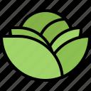 cabbage, food, shop, supermarket, vegetable, vegetables