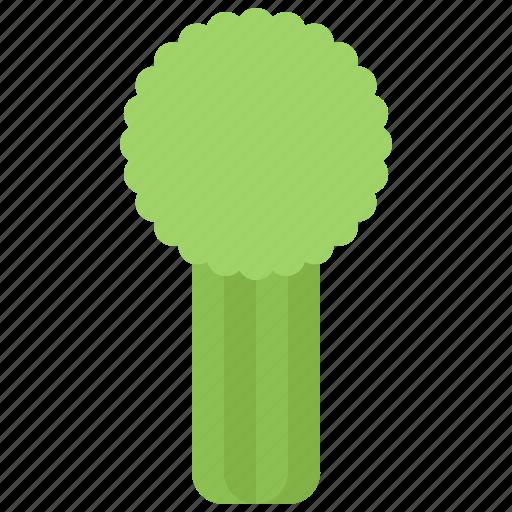 Celery, food, shop, supermarket, vegetable, vegetables icon - Download on Iconfinder