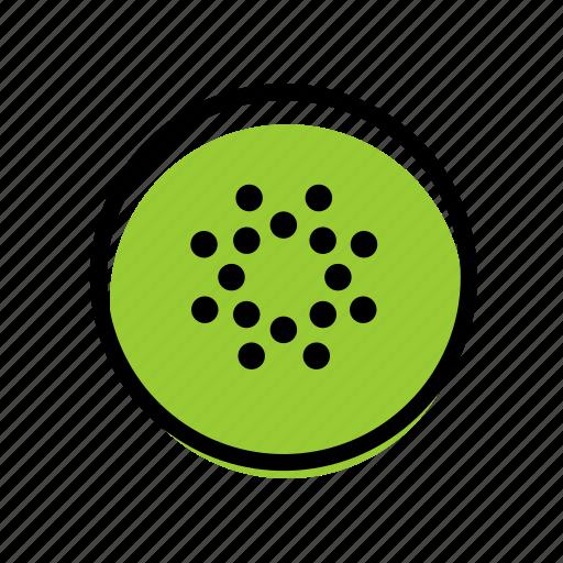basic license, color, food, fruit, kiwi icon