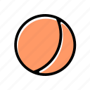 basic license, color, food, fruit, peach icon