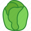 brussels, brussles, cabbage, green, miniature, sprout, sprouts icon