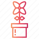 blossom, flowerpot, flowers icon