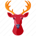 decoration, deer, furniture, head, home, household, interior