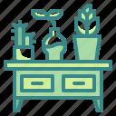 cabinet, decoration, furniture, household, plant, pot, tabale