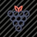 fruit, gambling, grape icon