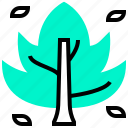 botany, dry, ecology, leaf, plant icon