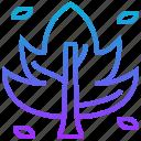 botany, dry, ecology, leaf, plant icon