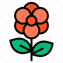 equipment, flower, garden, plant, tool icon