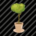 branch, cartoon, garden, leaf, pot, seed, tree