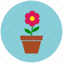 ecology, floral, flower, flower pot, nature icon