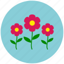 ecology, environment, flowers, garden, nature, plant, spring icon