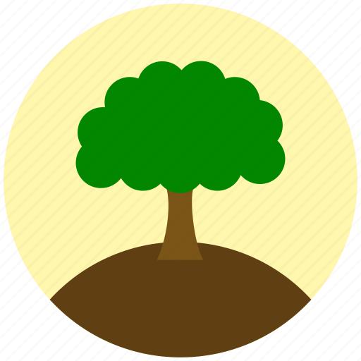 ecology, environment, forest, greenery, nature, plant, tree icon