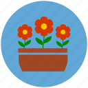 flowers, flowers pot, garden, gardening, nature icon