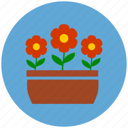 flowers, flowers pot, garden, gardening, nature icon