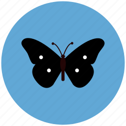 butterfly, ecology, flower, nature icon
