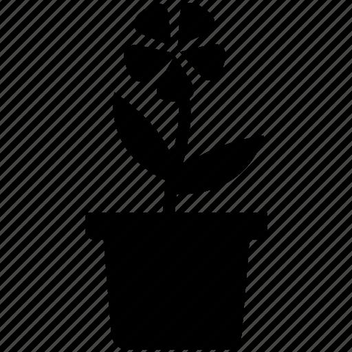 flower, garden, green, leaf, nature, plant, pot icon