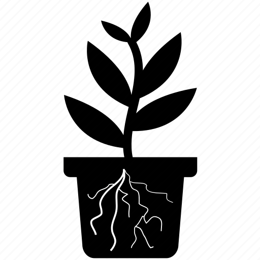 eco, flowerpot, garden, grass, grow, plant, pot icon