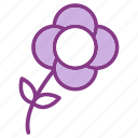 flower, gardening, nature, plant icon