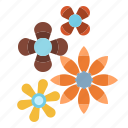 blossom, botanical, flower, nature, petals icon