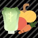 food, oganic, salad, vegan, vegetable icon