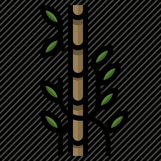 farming, gardening, plant, stake, veticalgarden icon