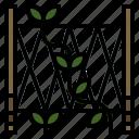 flattrellis, gardening, plant, veticalgarden icon