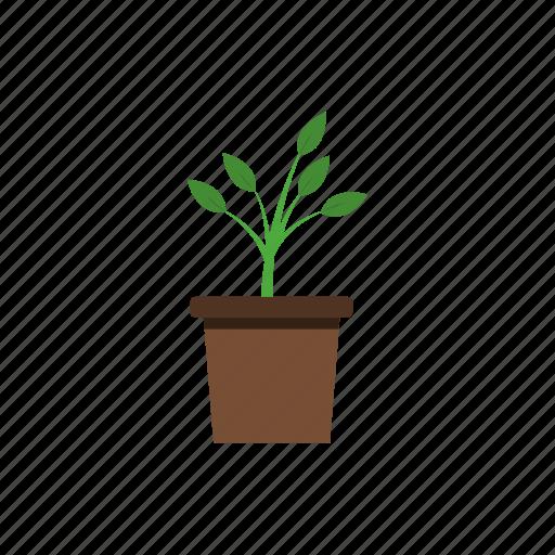 garden, leaves, nature, plant, plant pot icon
