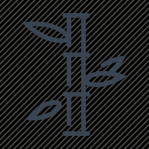 bamboo, gardening, nature, plant icon