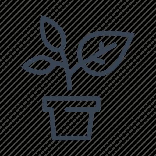 garden, gardening, plant, pot icon