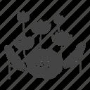 blossom, botanical, flowers, garden, leaves, lotus, nature
