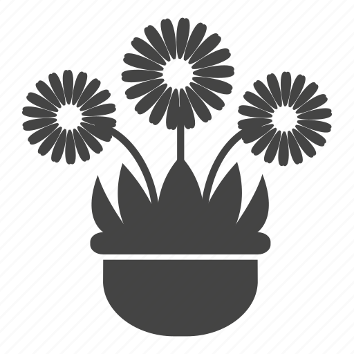 blossom, daisy, flowers, garden, leaves, nature, pot icon