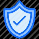 shield, lock, security, internet, check