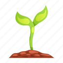 eco, gene, nature, plant, product, sprout