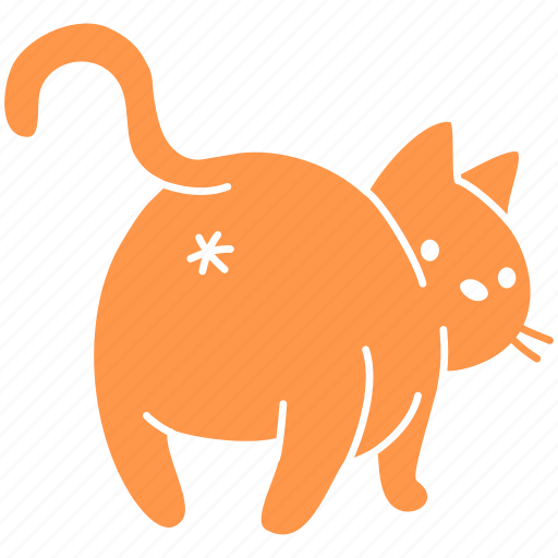 butt, cat, cute, feline, ginger, meow, pet icon
