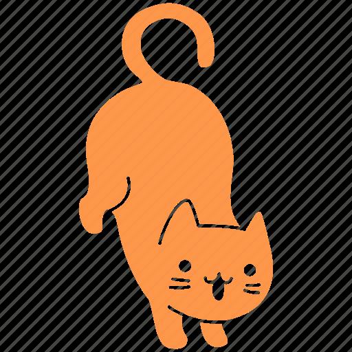 cat, cute, feline, ginger, meow, pet, trick icon