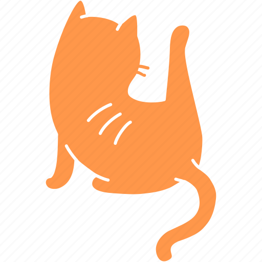 cat, clean, cute, feline, ginger, meow, pet icon