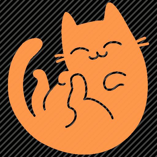cat, cute, feline, ginger, happy, meow, pet icon