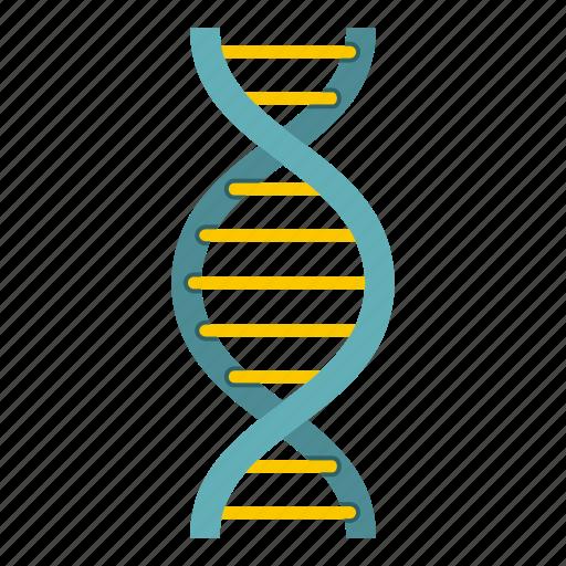 biology, dna, genetic, health, medicine, science, strand icon