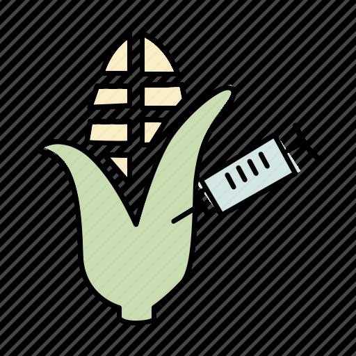 corn, genetic, gmo, maize, modification, science, syringe icon