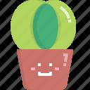 astrophytum, cacti, cactus, desert, nature, pot, summer icon